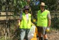 boondall-nhw-cleaning-australia